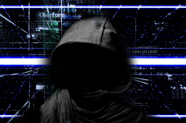 zločinec na internetu
